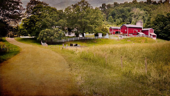 New England Farm Art Print featuring the photograph Down On The Farm by Bill Wakeley