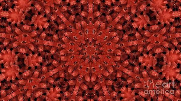 Kaleidoscope Art Print featuring the photograph Kaleidoscope 60 by Ron Bissett