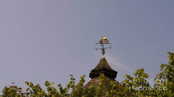 Weathervane Art Print featuring the photograph Le Tour Weather Vane by John Chatterley