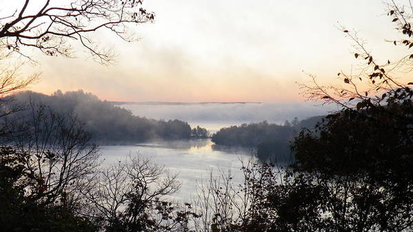 Landscape Art Print featuring the photograph Morning Mist by Davandra Cribbie