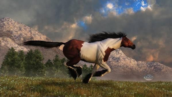 Hidalgo Art Print featuring the digital art Pinto Mustang Galloping by Daniel Eskridge