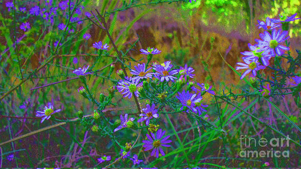 Lavender Art Print featuring the photograph Victorian Noise 2 by Cheryl Raber
