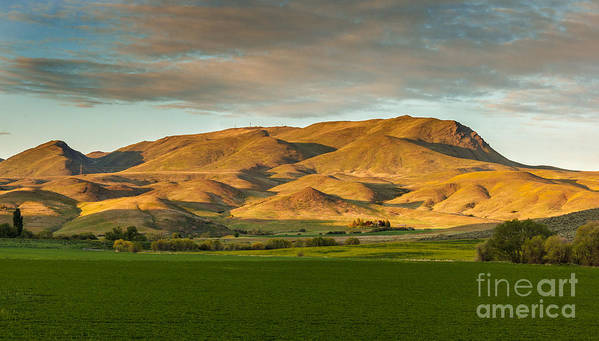 Gem County Art Print featuring the photograph West Side Of Squaw Butte by Robert Bales