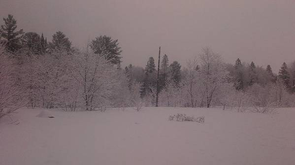 Landscape Winter Art Print featuring the photograph Winter Delight by Richard Hodge
