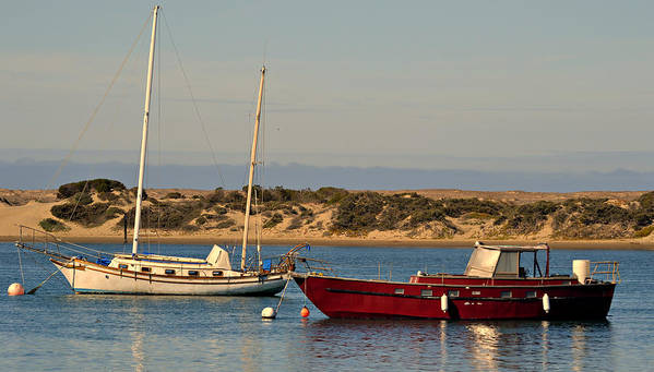 Boats In The Harbor Print featuring the photograph Before Sundown by Fraida Gutovich