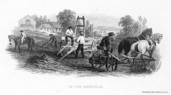 1870 Art Print featuring the photograph Farming, C1870 by Granger
