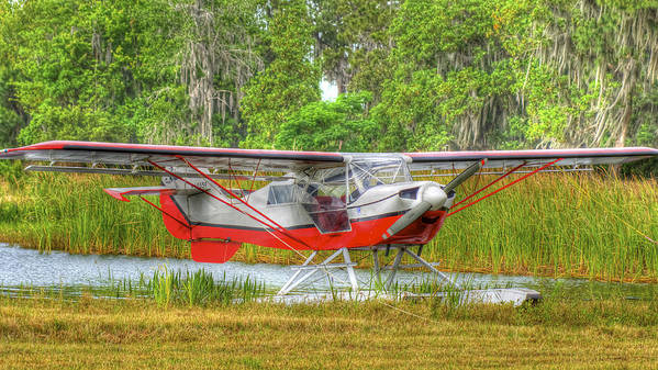 Seaplane Art Print featuring the photograph In The Woods by Dieter Lesche
