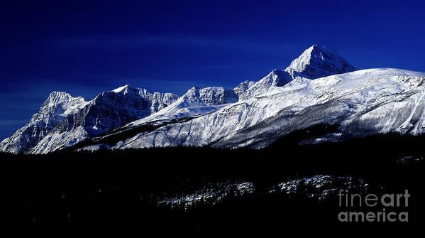Jasper National Park Art Print featuring the photograph Jasper National Park In Winter Time by Terry Elniski