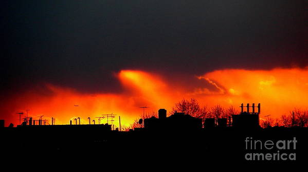 Sunset Art Print featuring the photograph March 1 2008 by Mark Gilman