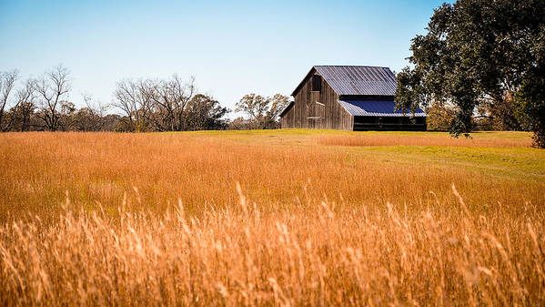 Louisiana Art Print featuring the photograph Autumn Barn by Bonnie Marquette
