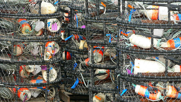 Crabs Art Print featuring the photograph Crab Traps by Larry Keahey