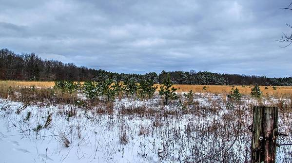 Snowy Farm Field Long Island New York Art Print featuring the photograph Old Farm Field Li.ny by Terry McCarrick