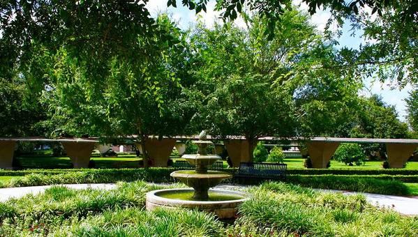 Fsu Gardens Art Print featuring the photograph Fsu Grounds by Bennett Thompson