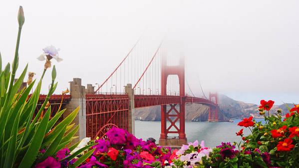 Golden Gate Art Print featuring the photograph Golden Gate Bridge Flowers 2 by Lawrence S Richardson Jr