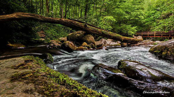 Christopher Holmes Photography Art Print featuring the photograph Mountain Stream Iv by Christopher Holmes