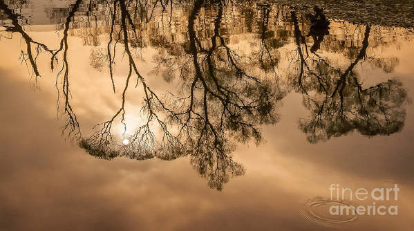 Carpathian Art Print featuring the photograph River Sunset by Lyudmila Prokopenko
