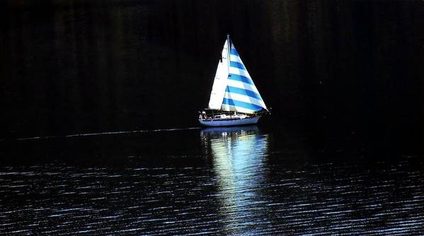 Sailboat Art Print featuring the photograph Sailing by Tiffany Vest