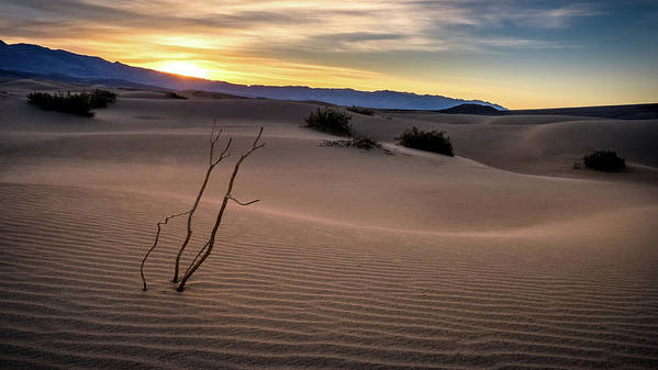 Death Valley Art Print featuring the pyrography Sand Dune by Liang Li
