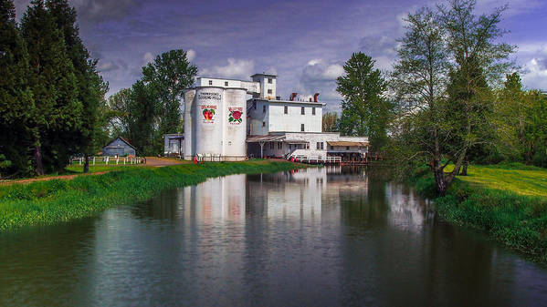 Historic Mill Art Print featuring the photograph Thompson's Mill by Michele James