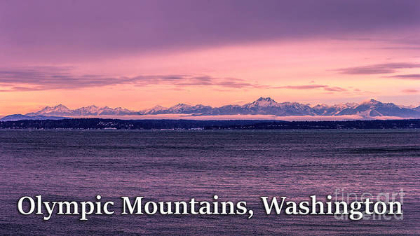 Olympic Mountains Art Print featuring the photograph Olympic Mountains, Washington by G Matthew Laughton
