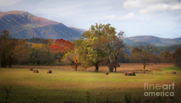 Cades Cove Art Print featuring the photograph Beautiful Cades Cove by Lena Auxier