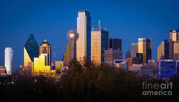 Dallas Art Print featuring the photograph Dallas Skyline by Inge Johnsson