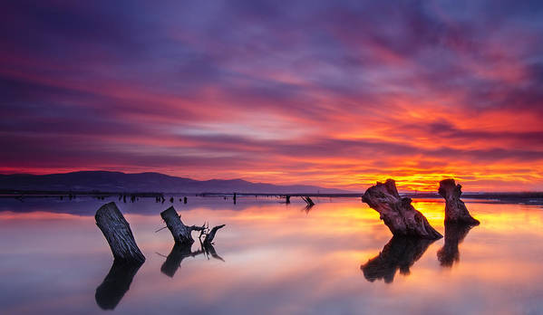 Landscape Art Print featuring the photograph Fire In The Sky by Andrey Trifonov