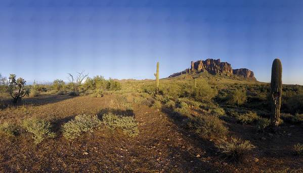 Mountain Art Print featuring the photograph Lost Dutchman Park Supestition Mountains by Brian Lockett