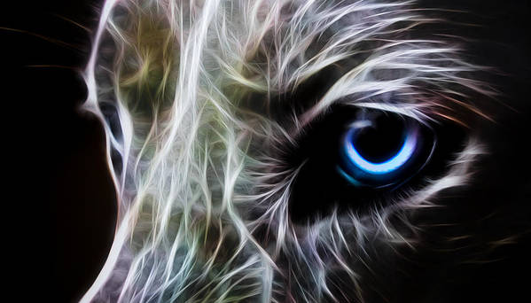 Wolf Art Print featuring the digital art One Eye by Aged Pixel
