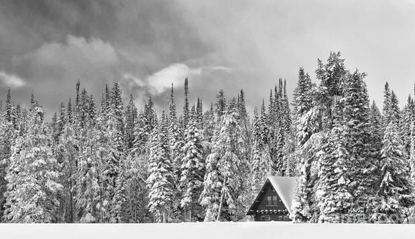 Black & White Art Print featuring the photograph Taking Refuge - Grand Teton by Sandra Bronstein