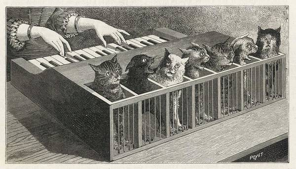 Cat Art Print featuring the drawing Variations On A Catatonic Scale by Mary Evans Picture Library