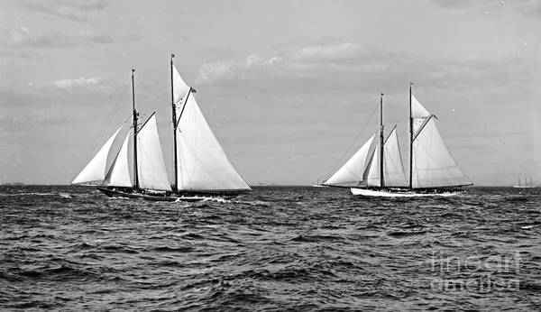 America's Cup Contenders Idler And Hildegarde 1901 Bw Print featuring the photograph America's Cup Contenders Idler And Hildegarde 1901 Bw by Padre Art