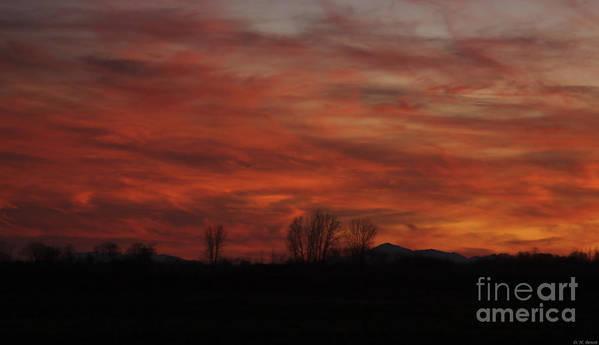Sunset Art Print featuring the photograph Evening In Red by Deborah Benoit