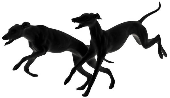 Greyhounds Art Print featuring the photograph Greyhounds Travelling At 45 Mph by Christine Till