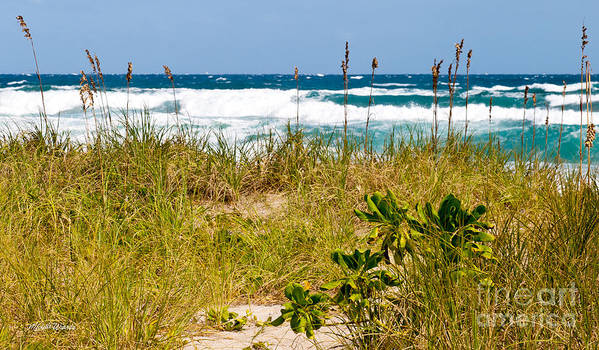 Its A Shore Bet Art Print featuring the photograph Its A Shore Bet by Michelle Wiarda-Constantine