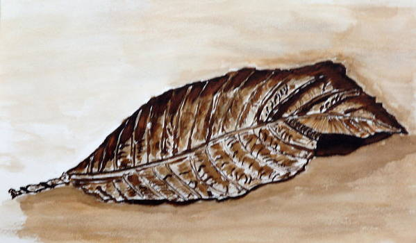 Sepia Art Print featuring the painting Sepia Leaf. by Shlomo Zangilevitch