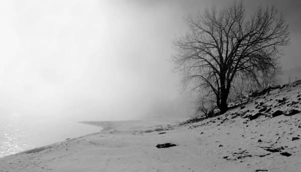Landscape Art Print featuring the photograph Stillness by Donna Duckworth