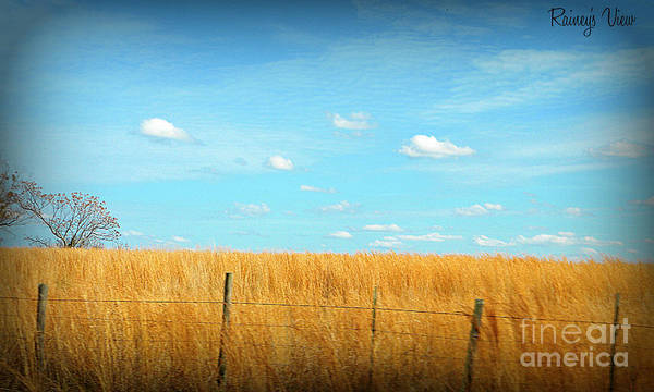 Landscape Art Print featuring the photograph Amber Waves And Blue Skies by Lorraine Heath