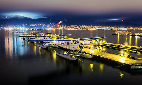 Vancouver Art Print featuring the photograph Ducks In A Row by Alexis Birkill