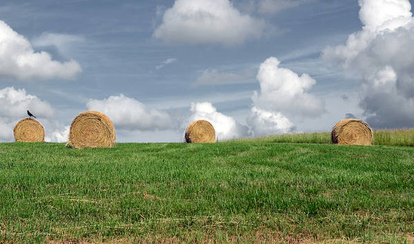 Countryside Art Print featuring the photograph Hay Bales by Steven Michael
