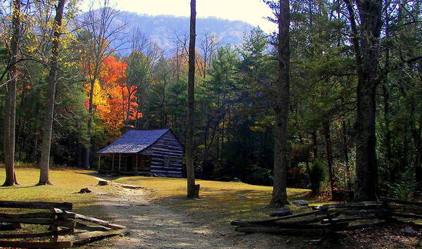 Cabins Print featuring the photograph Traveling Back In Time by Karen Wiles