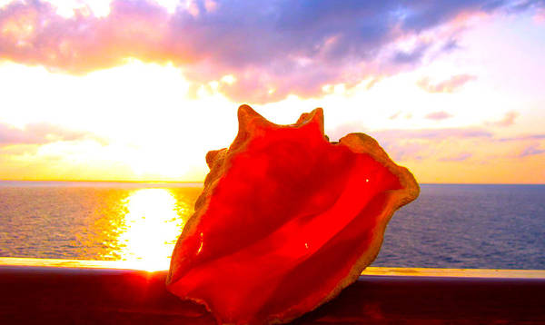 Shells Art Print featuring the photograph Conch Sunset by Stacey Robinson