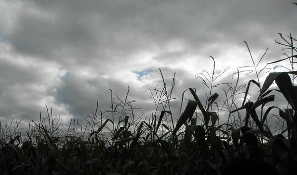 Clouds Art Print featuring the photograph Eerie Field by Karen Jordan