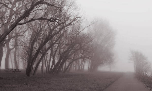 Fog Art Print featuring the photograph Fog by Brian Fisher