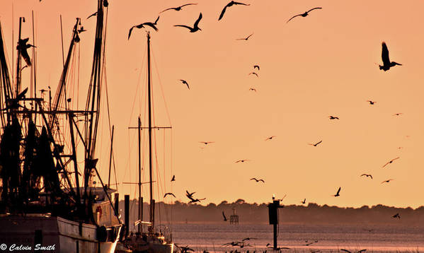 Sullivans Island Pelicans Pier Boats Dock Sand Dune Lighthouse Art Print featuring the photograph Fowl Sunset by Calvin Smith