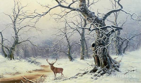 Winter Scene; Stag; Deer; Snow Art Print featuring the painting A Stag In A Wooded Landscape by Nils Hans Christiansen