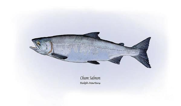 Chum Salmon Art Print featuring the painting Chum Salmon by Ralph Martens