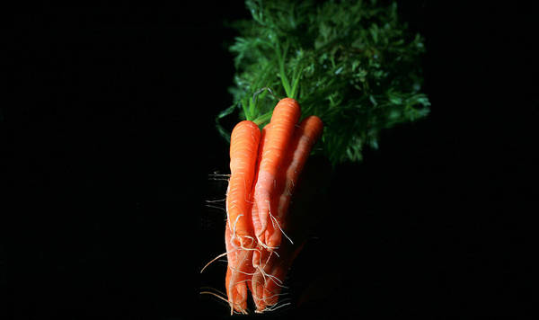 Agricultural Art Print featuring the photograph Carrots by Michael Ledray
