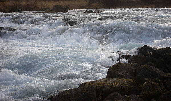 Nature Art Print featuring the photograph Rushing Water by Marilynne Bull