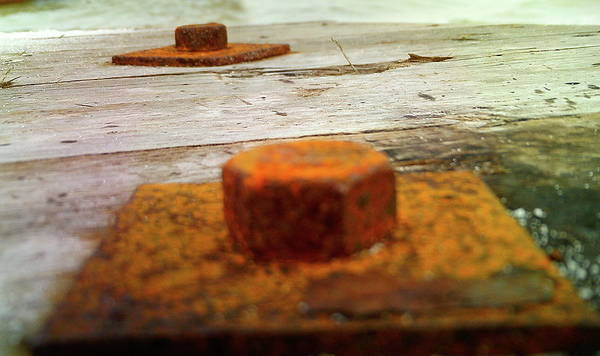 Rust Art Print featuring the photograph Rust by Barbara Palmer